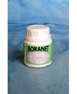 boranet-renovador-juntas